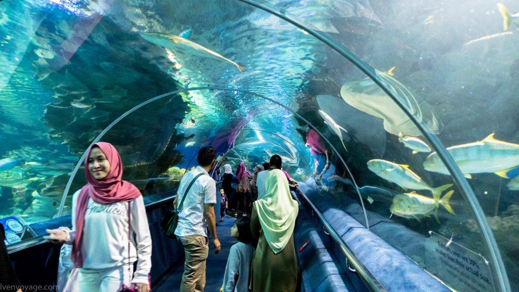 TUNNEL AQUARIA KLCC Kuala Lumpur