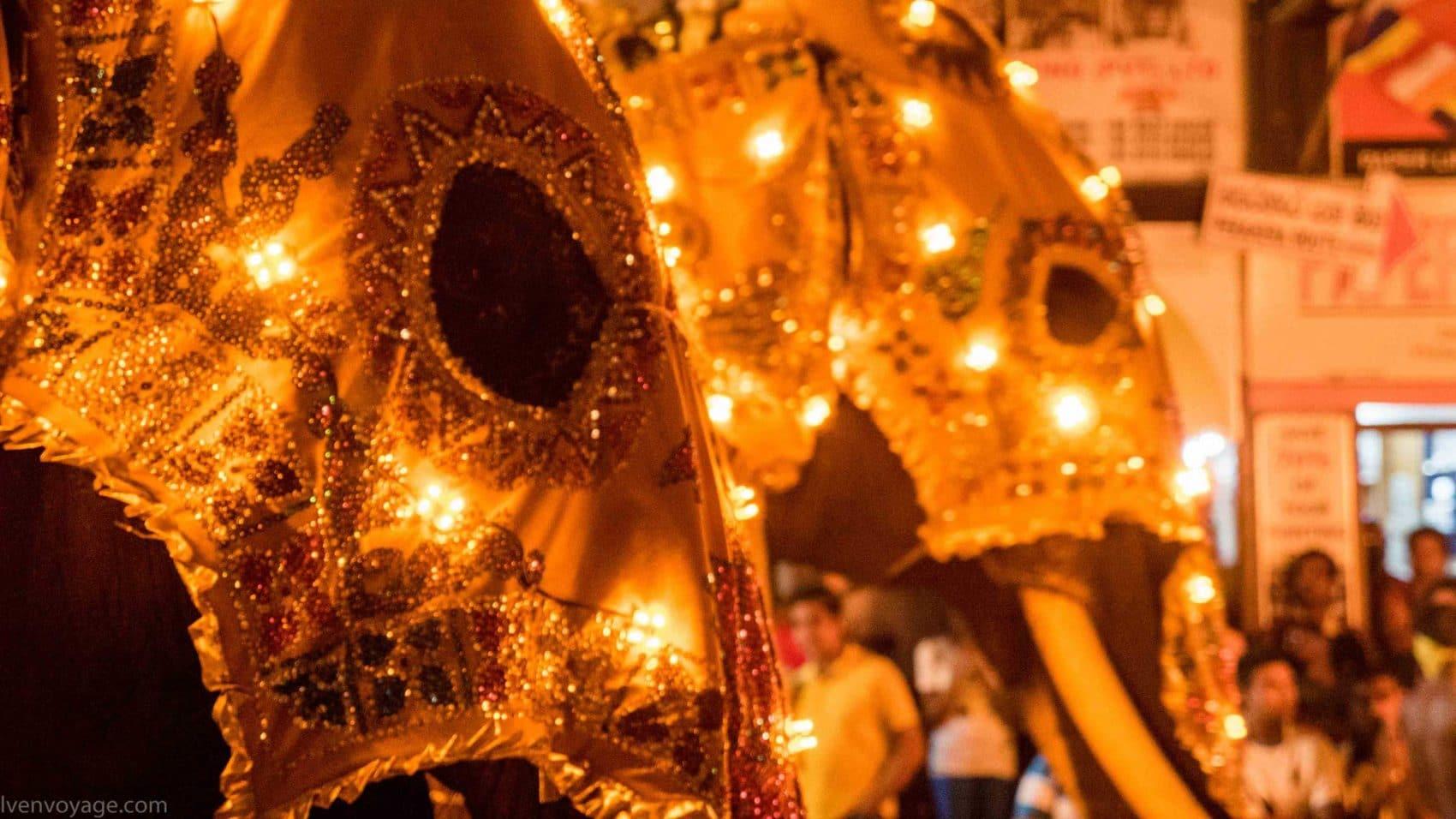 Perahera de Kandy : Comment se déroule cette immense fête au Sri Lanka ?